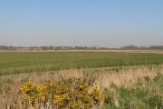 Farmland, Stonebridge Marshes