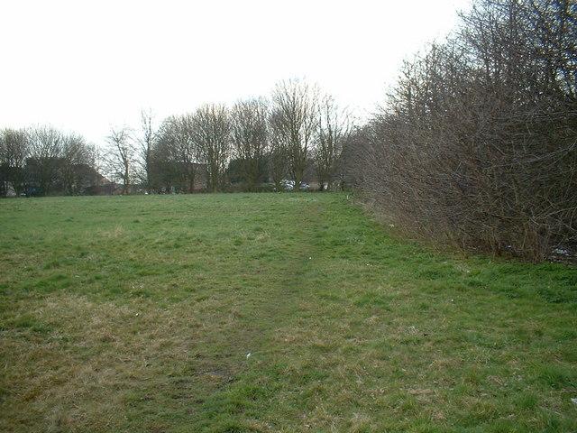Common Land in Common Lane
