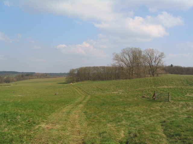 Fields and small wood south of Sudborough