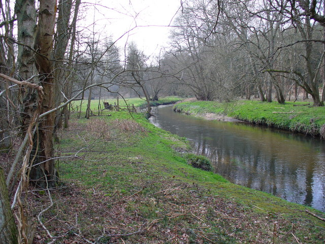 River Wey at Tilford Common