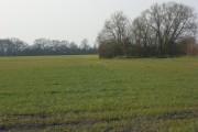Farmland, East Challow