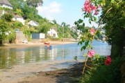 A summer morning in Helford