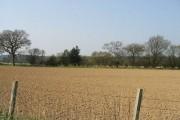 Farmland near Jacques Court