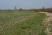 Farmland, Longworth