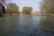 River Thames, Shifford