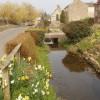 Stream by village street, Wendlebury