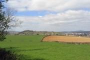 Fields beside Green Lane outside Bridport