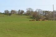 Mixen and farmland, Floodgates