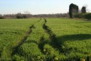 Farmland at Fenton
