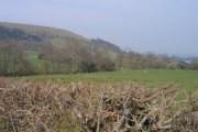 Tir Amaethyddol ger Llandinam / Farmland near Llandinam