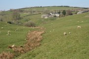 Molland: towards North Stone