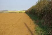 Farmland near Chale Green