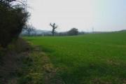 Farmland  near  Garendon