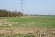 Field with pylon
