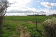 Open farmland near Latchford, Herts