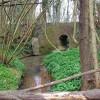 Stream under Gribble Bridge Lane