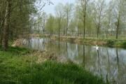 River Stour, Suffolk/Essex border