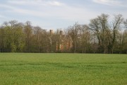 Hatfield Regis Grange