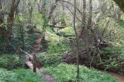 """And Across the Rickety Bridge"" - Bowhills, Shropshire"