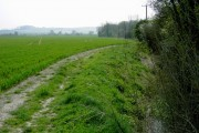Track & hedge on TL0931