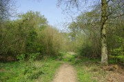 Path, Garnetts Wood