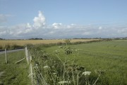 Across the fields to Dorchester