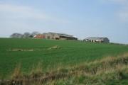 Middle Essie Farm
