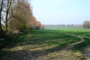 Field north of Pested Lane