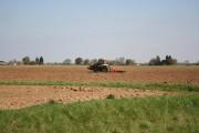Leverton Ings farmland
