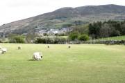 View across farmland towards the village of Rhiwlas