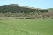 George Nympton: Mole valley