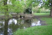 River Ash in Ashford