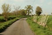 Verdons Lane