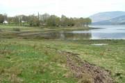 Shoreline on Loch Eil