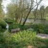 Rosedale Pool