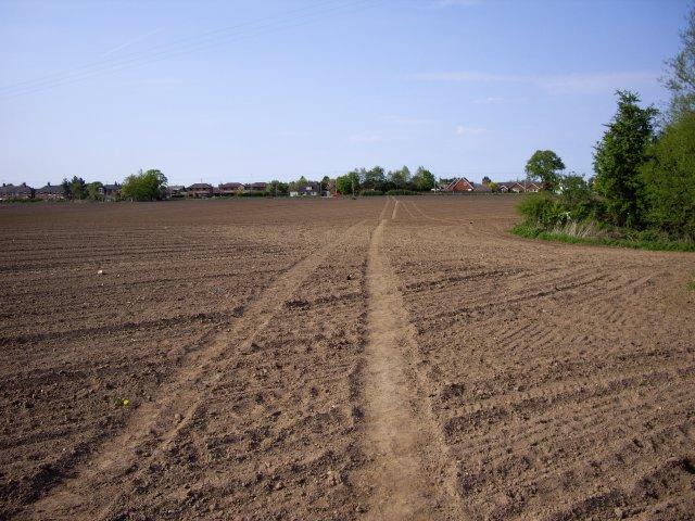 Footpath to Shavington