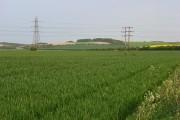Farmland, Manningford Bruce