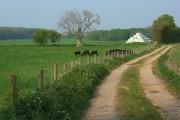 Farmland, Ludgershall