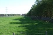 Eastern edge of Wickerinn Wood