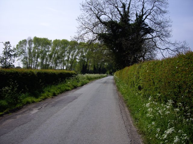 View down Annions Lane