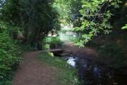Bridge Over Stream, Longdon