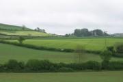 Farmland adjoining the A39