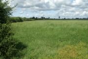Fields near Highermoor