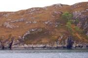 Coast of Aird