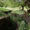 Walled path, Miserden