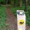 Path to Oldlands Wood