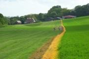 Farmland, Owslebury