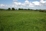 Farmland at Bagley Head