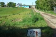 View to Auchtydonald Farm