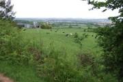 Graig Llanishen Footpath, Thornhill